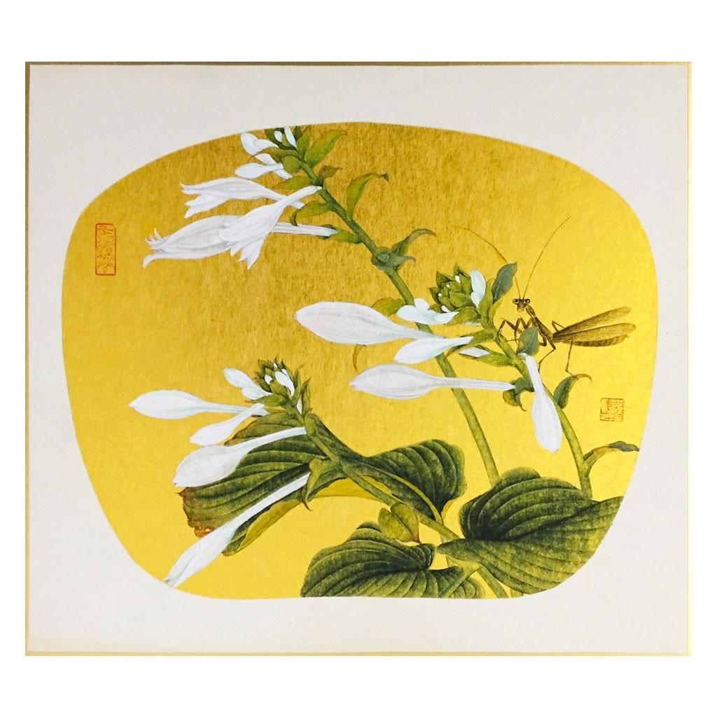 玉簪 (27cm*24cm)