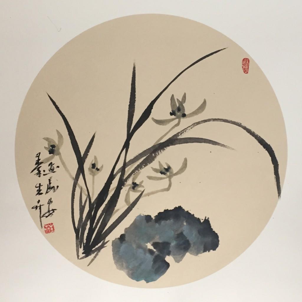 兰草(50cm*50cm)