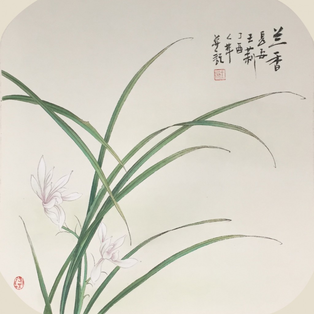兰香(50cm*50cm)
